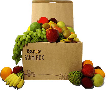 barosi farmbox