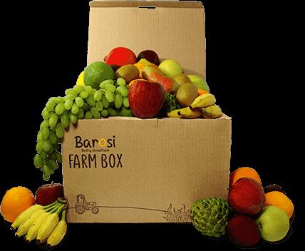 barosi farmbox